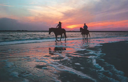 Escape From Reality Riding Horseback In Seaside Oregon Is Like No Other Experience The World Just North Of Beach Wide Open For Endless